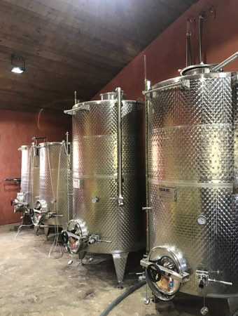 domaine de piscia corse vignoble fermentation