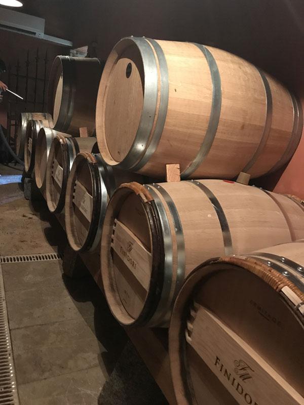 domaine de piscia corse vignoble chais vin